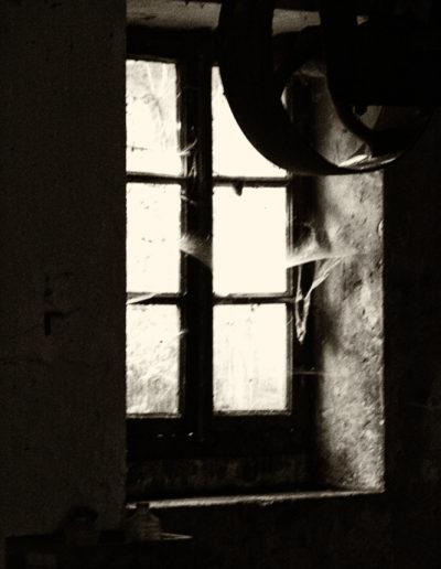 © Alain Ricci